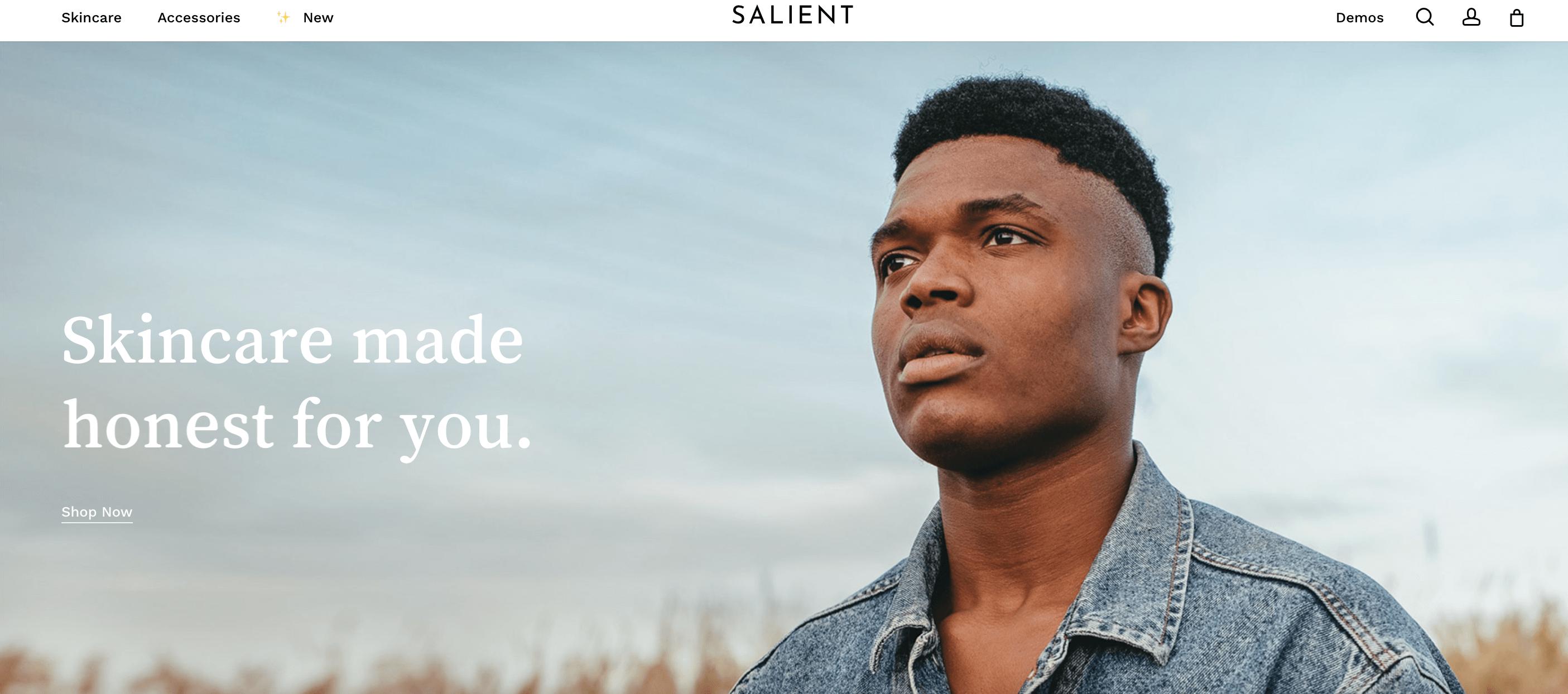 Salient HTML5 WordPress Theme