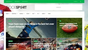 GoodLife WordPress Theme Review GoodSport