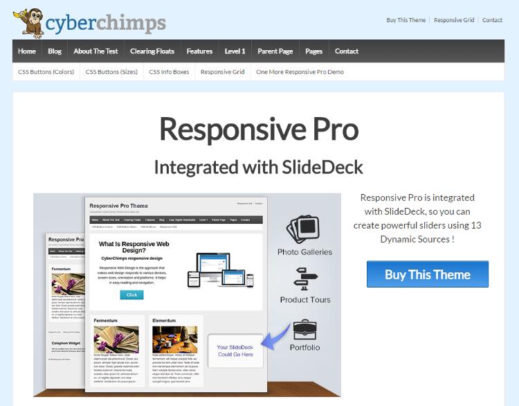 responsive-pro-cyberchimps-demo