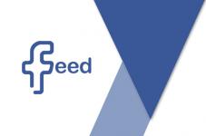 wordpress facebook feed plugin