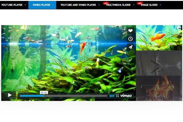 YouTube Vimeo Video Player Slider