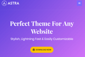 Best WordPress Themes - Astra