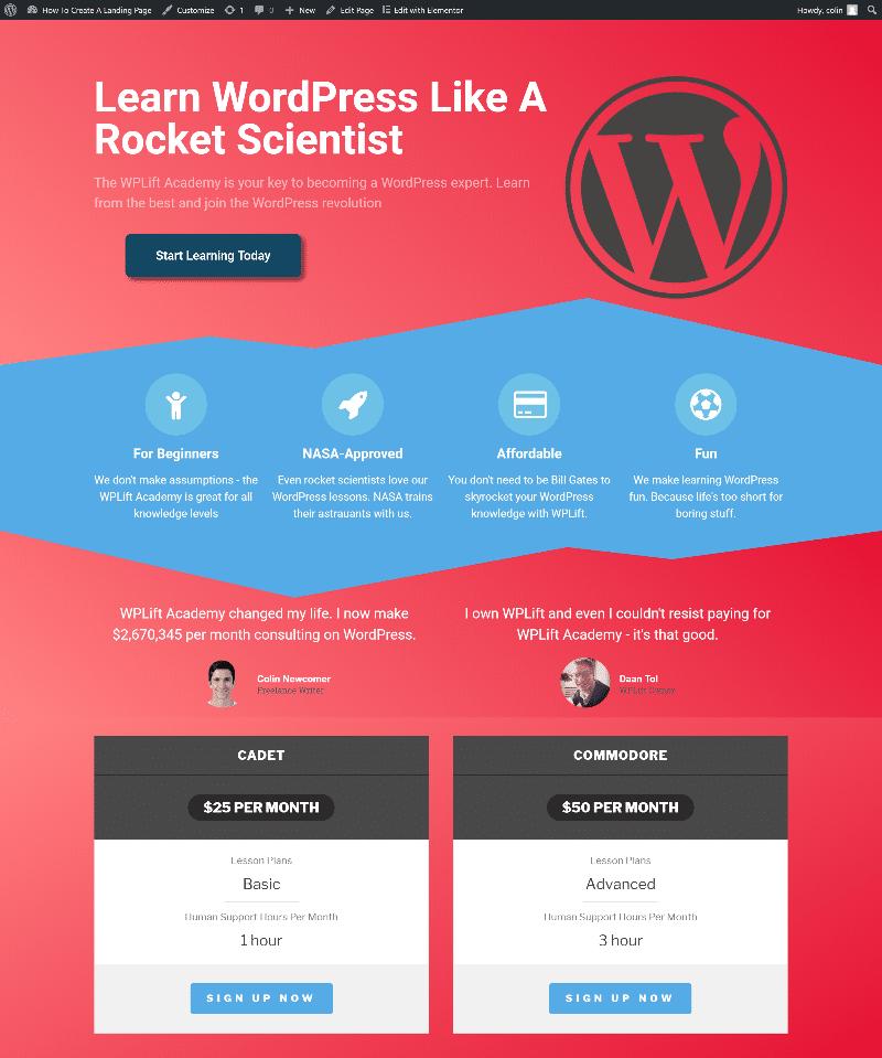 wordpress landing page example