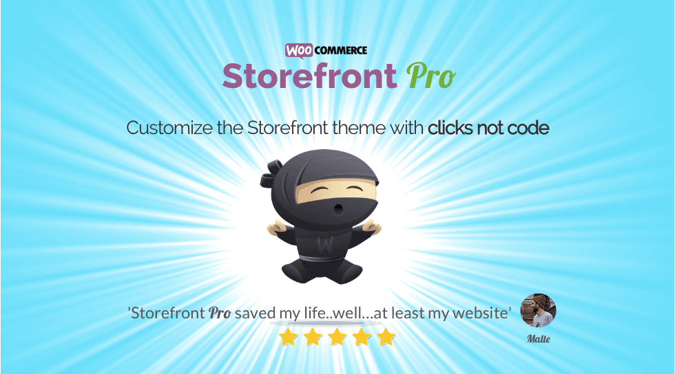 storefront pro