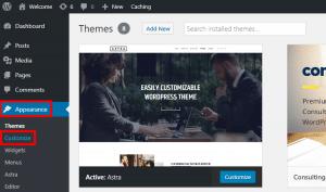 access wordpress customizer
