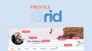 profile grid review