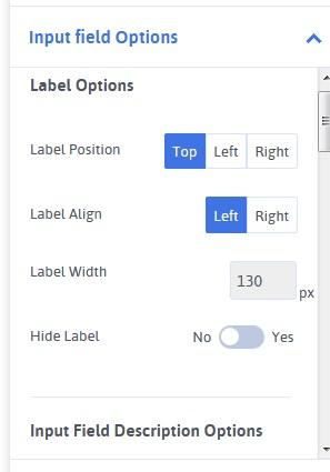 input field options