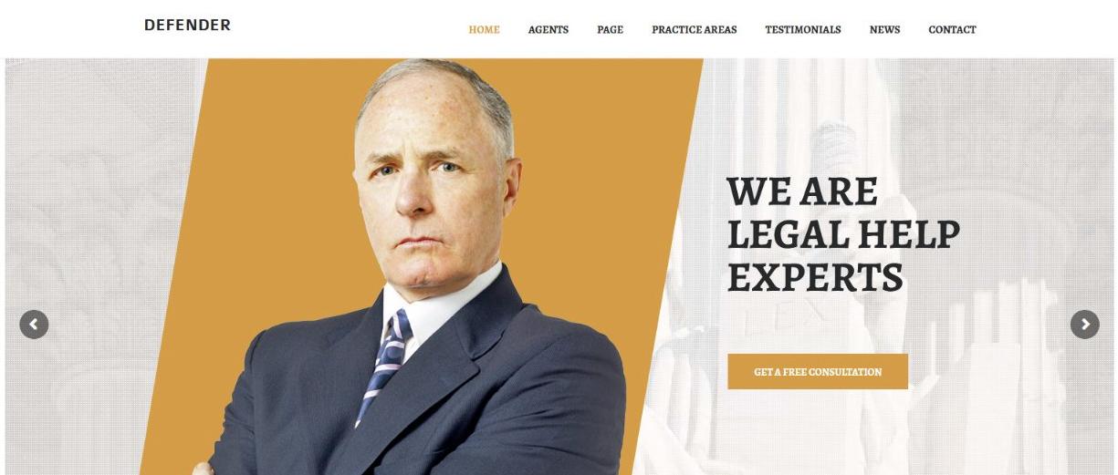 Defender lawyer theme