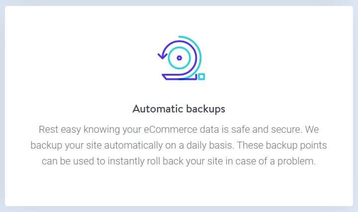 automatic backups kinsta