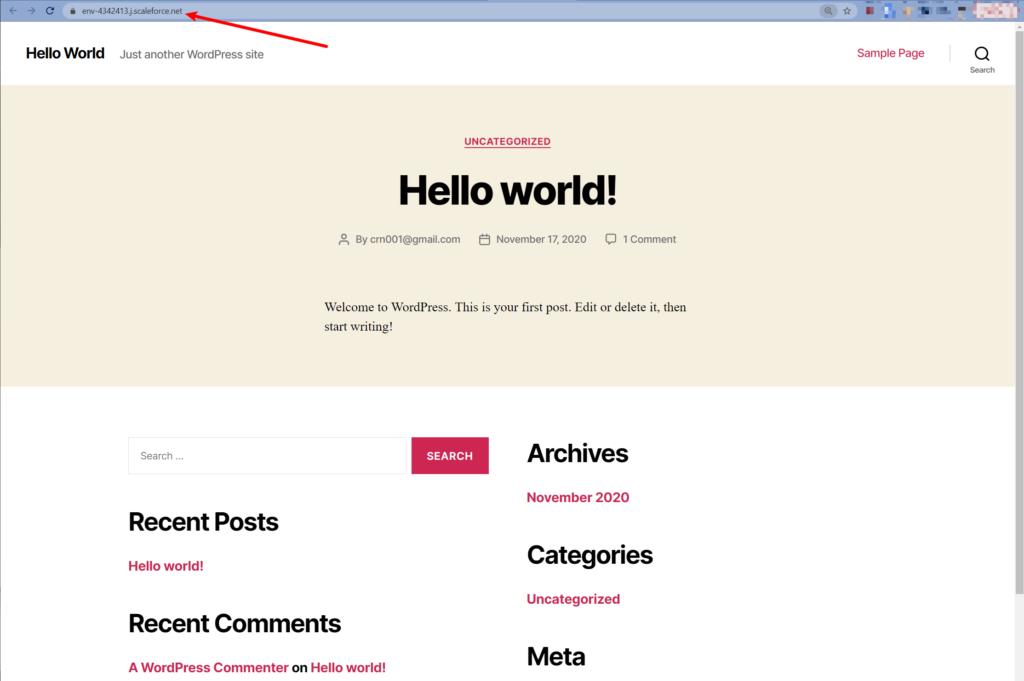 Working WordPress site
