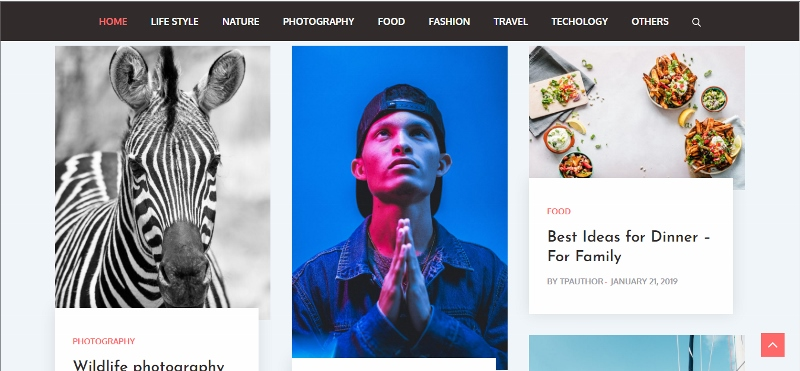 material design WordPress theme for bloggers