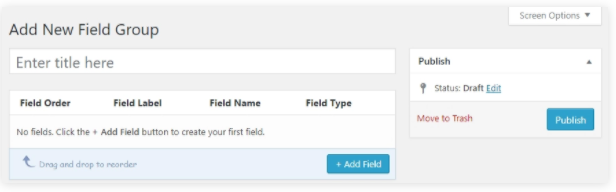 advanced WordPress custom fields