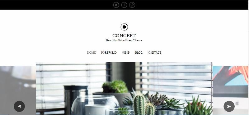 Simple clean WordPress theme