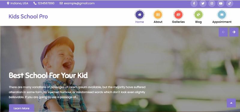 colorful wordpress theme for school websites