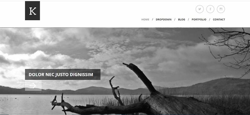 Clean monochromatic WordPress theme