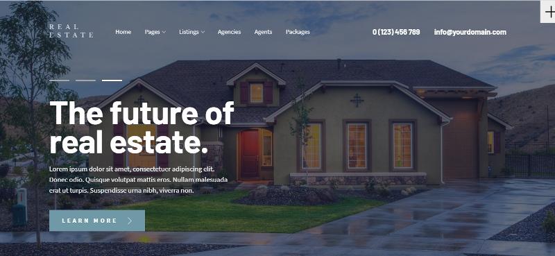 real estate website theme