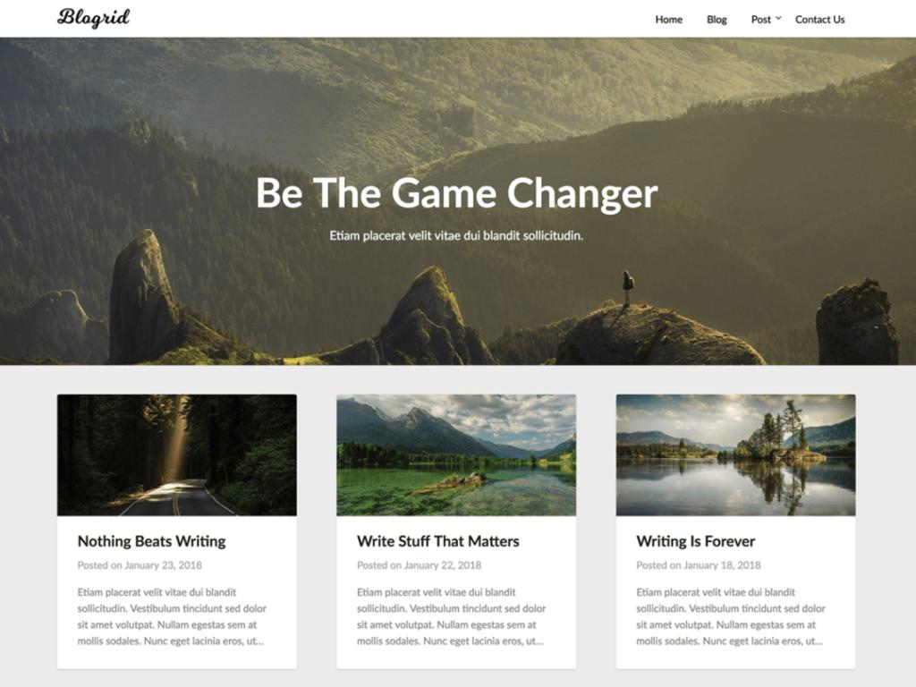 Blogrid Masonry WordPress Themes