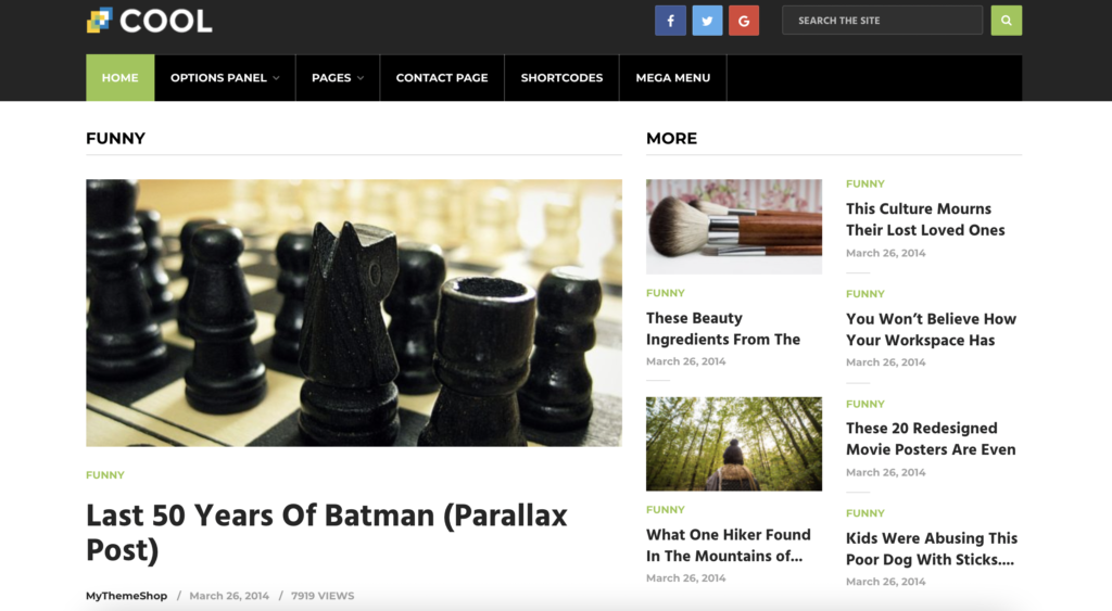 Cool WordPress review themes