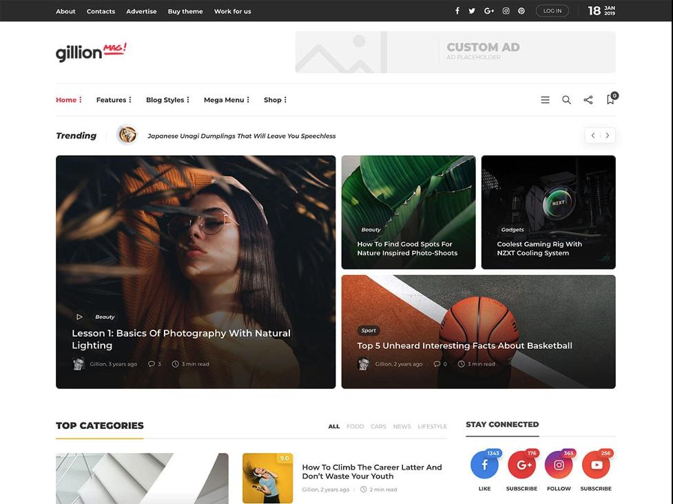 Gillian WordPress review themes