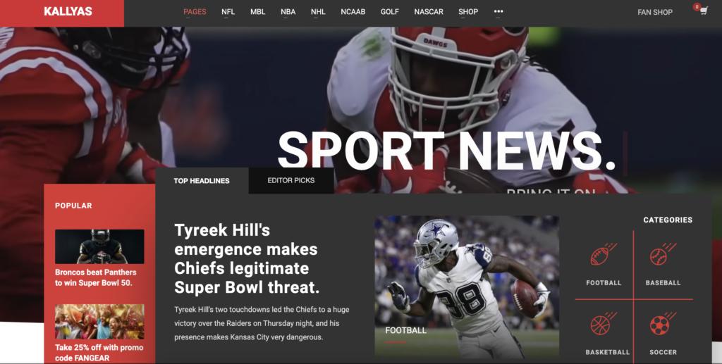 Kallyas wordpress sport themes