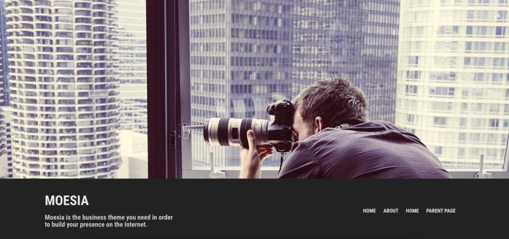 Moesa WordPress personal website theme