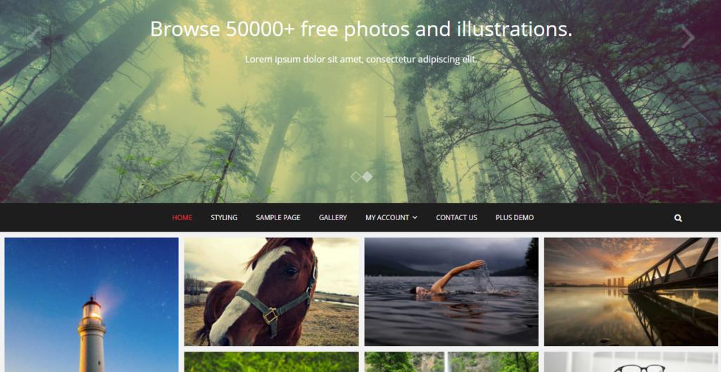 Pixgraphy WordPress portfolio themes
