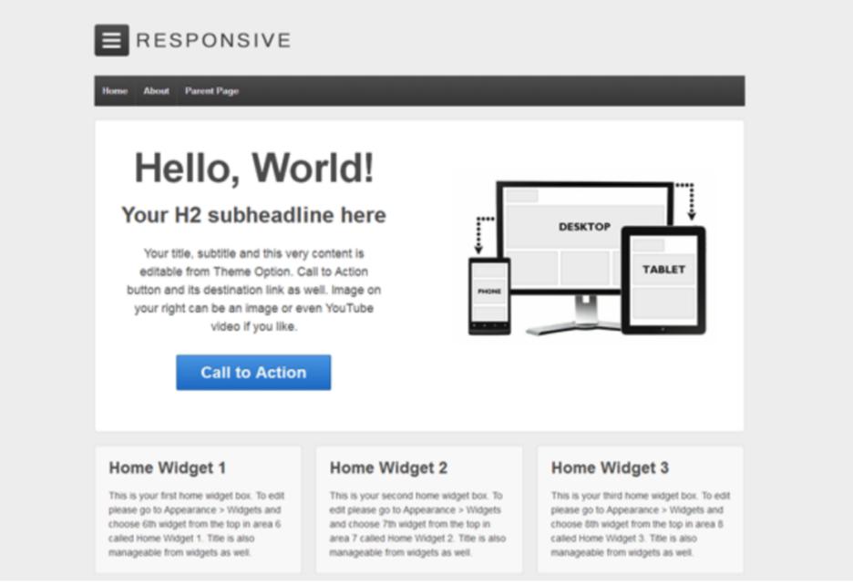Responsive  blank WordPress theme