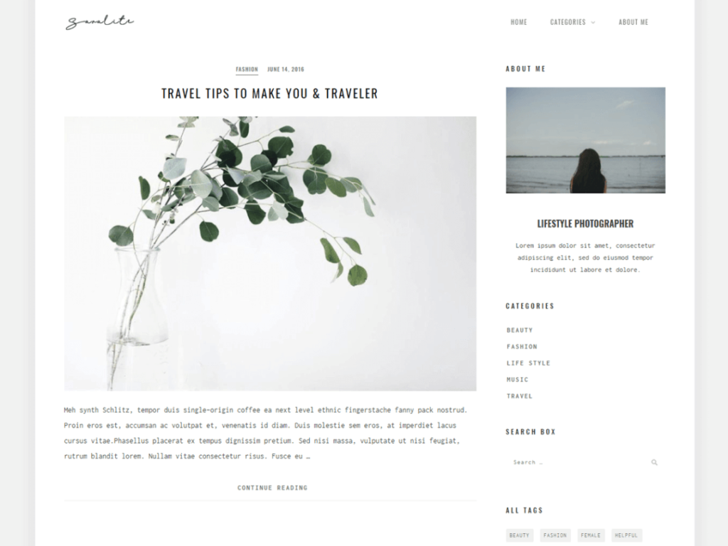 SaraLite WordPress personal website theme