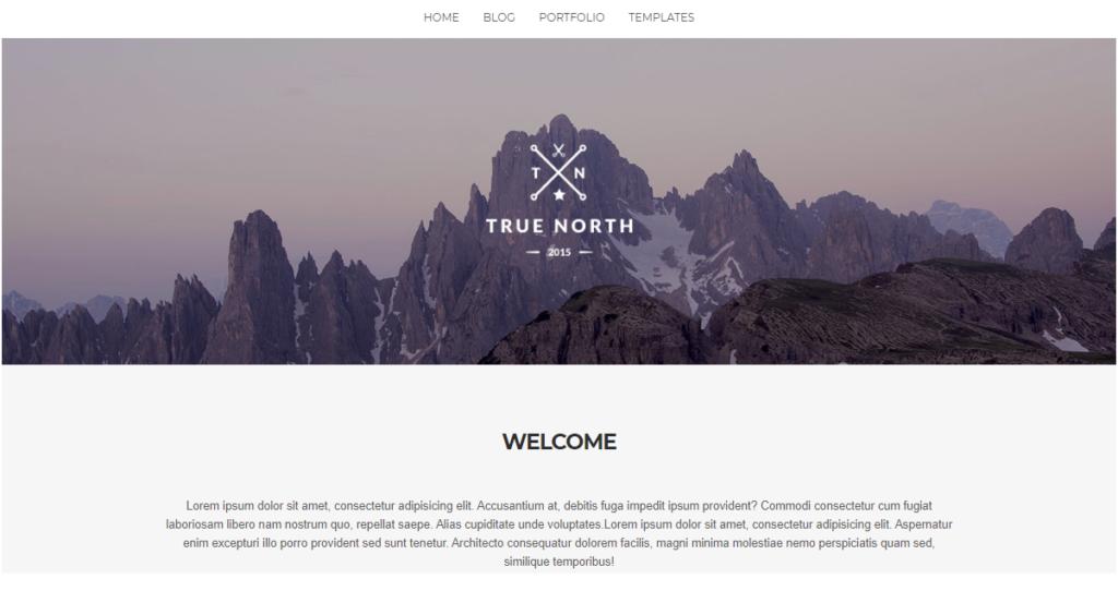 True North WordPress portfolio theme