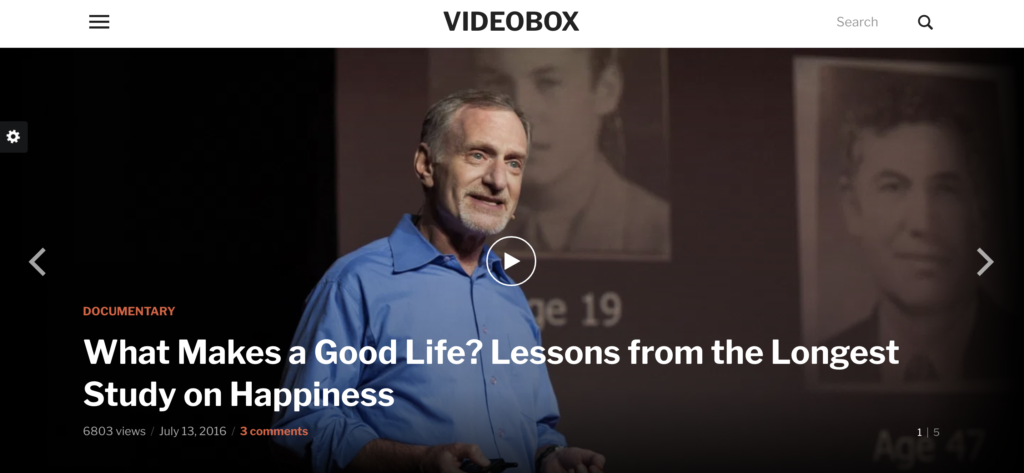 VideoBox  WordPress videos theme