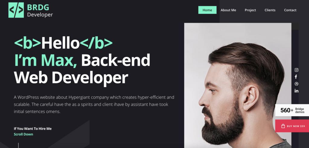 Bridge WordPress theme for programmers