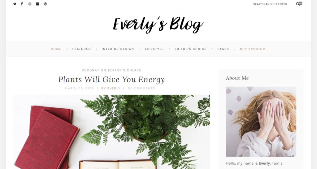 Everly Lite mobile friendly wordpress theme