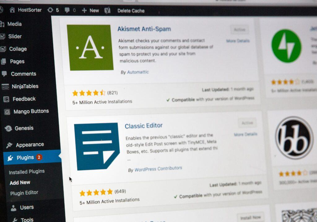 how to make money with WordPress - Plugin development