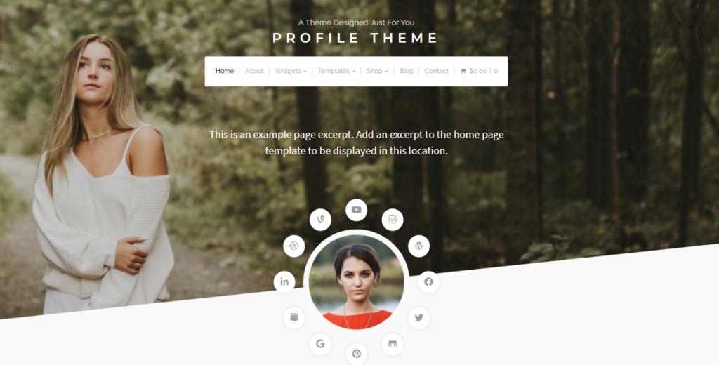 Profile - WordPress resume theme