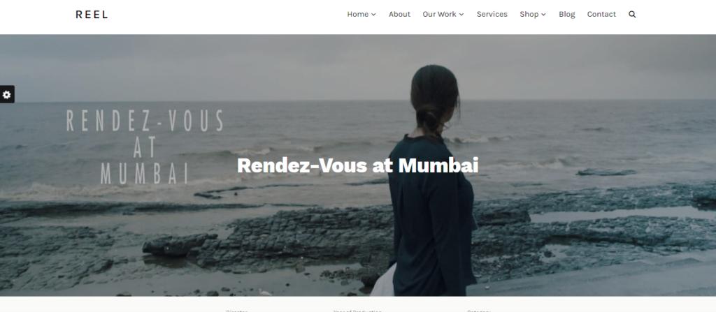 Reel WordPress resume theme