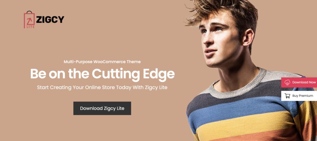 Zigcy mobile friendly wordpress theme
