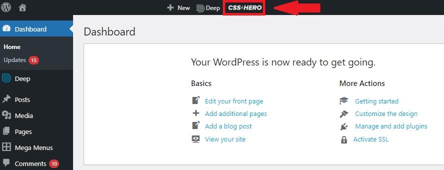 Launching CSS Hero
