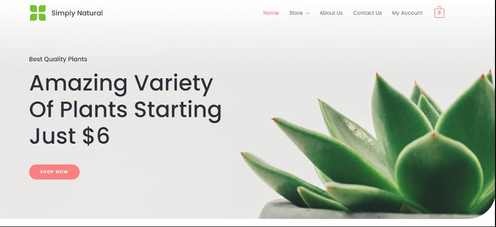 Astra WordPress starter themes