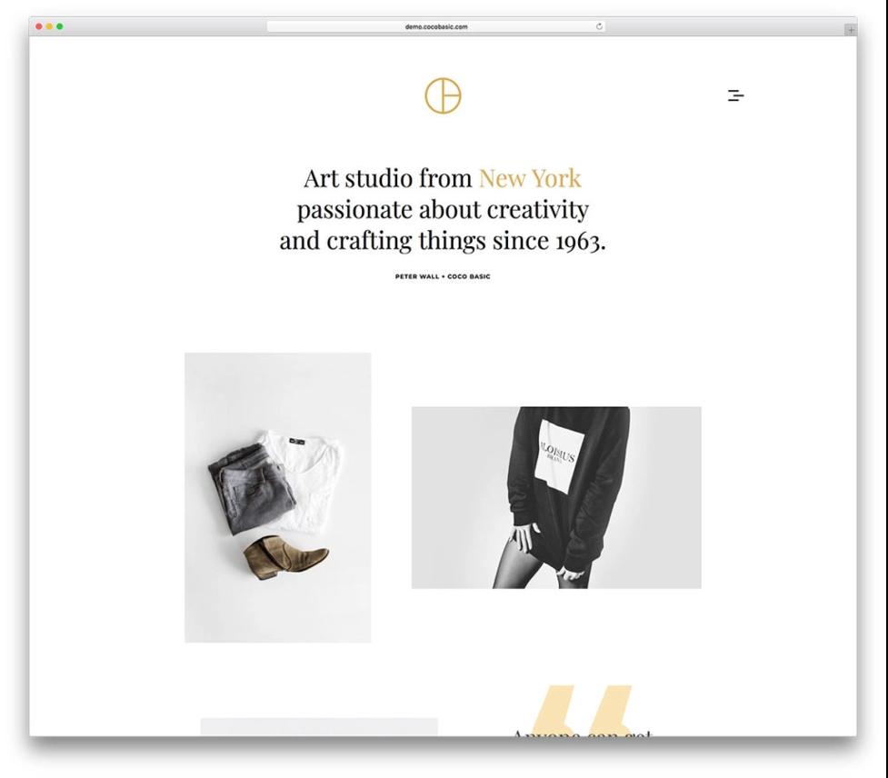 Opta minimalist wordpress themes