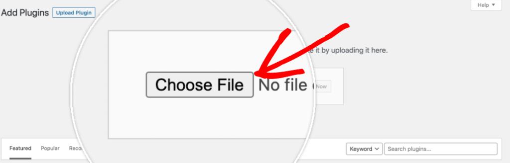 WPForms - choose file