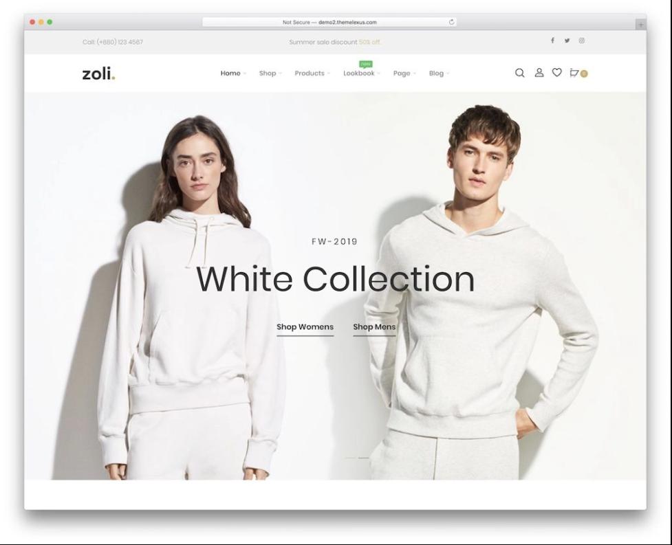 Zoli minimalist wordpress themes