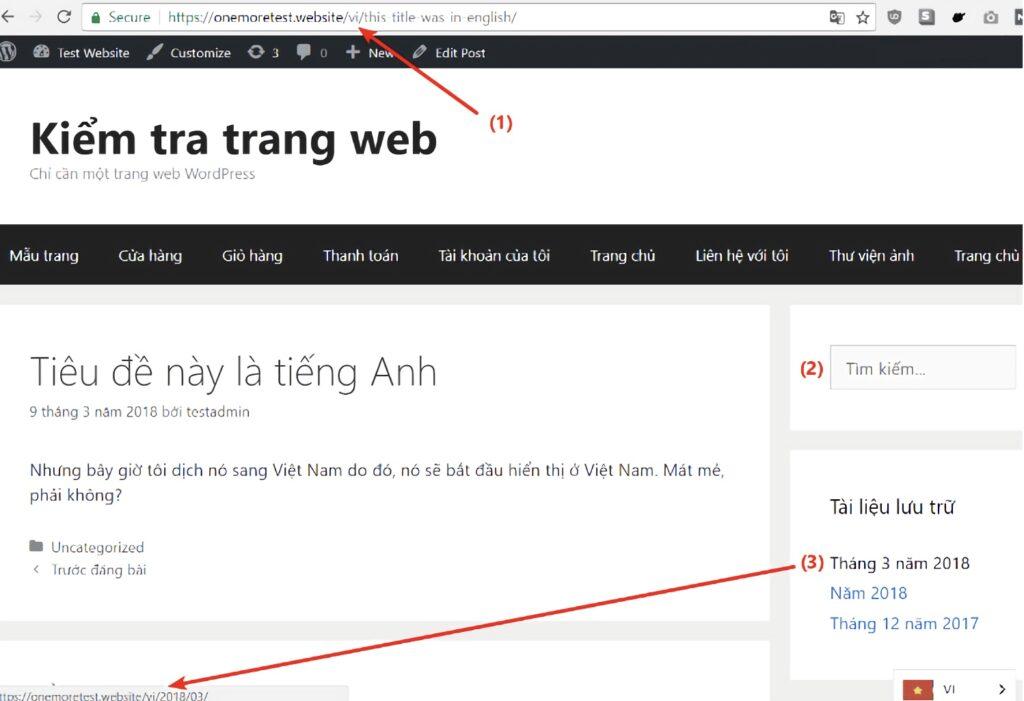 Weglot - test website in viet